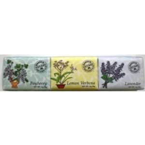 Pc. Boxed Set   Shea Butter Botanical Bar Soaps Case Pack 12   527763