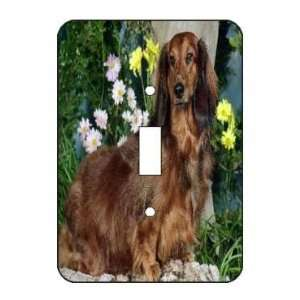 Standard Longhair Dachshund Light Switch Plate Cover