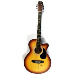 Taylor Authentic Autographed Hand Signed Acoustic Guitar Everything