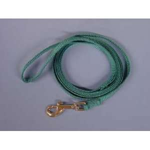 Hamilton Deluxe 6 x 3/8 S/T Nylon Dog Lead, Teal