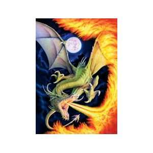 Dragon of Fire   500 Pieces Jigsaw Puzzle Toys & Games