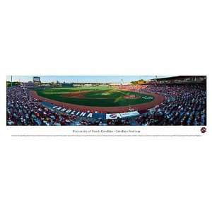 South Carolina Gamecocks Baseball Unframed Panoramic